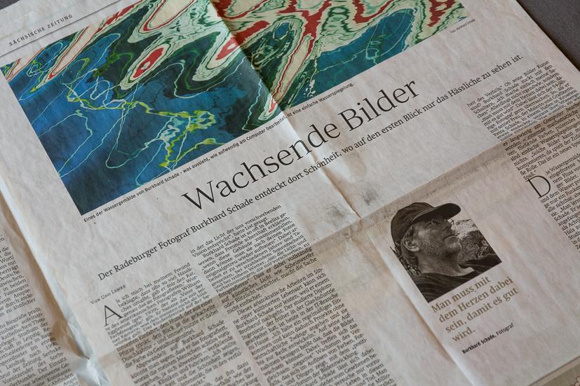 """""""Wachsende Bilder"""" in der Sächsischen Zeitung"""